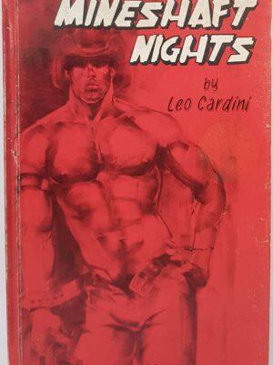 LGBTIQ+ Gay Fiction
